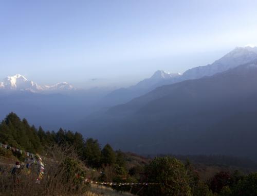 Annapurna Base Camp Trek Dag 3: Ghorepani til Tadapani