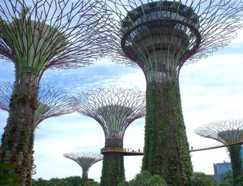 Dette stedet må du besøke i Singapore – Gardens by the bay